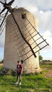 formentera moulin enderman small