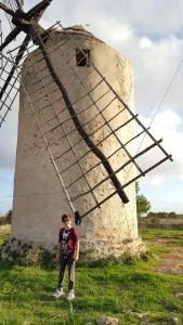 formentera moulin enderman small
