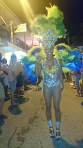 carnavalgrandcase